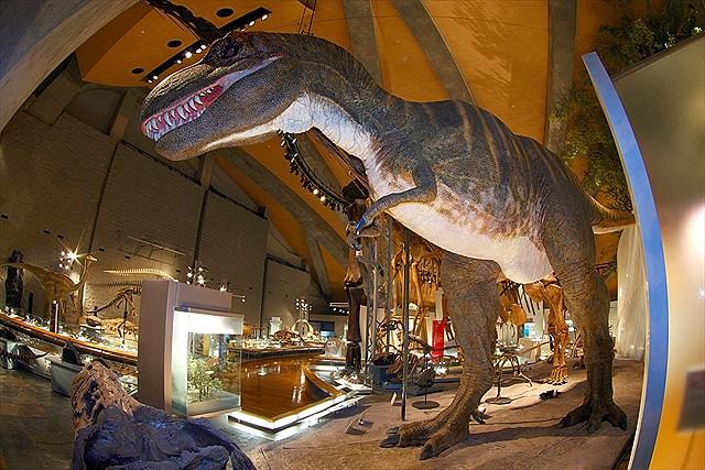 ティラノサウルスの画像 p1_36