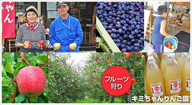フルーツ狩りのできる渋川市赤城町の「キミちゃんりんご園」