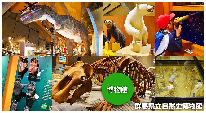 富岡市上黒岩の博物館 「群馬県立自然史博物館」