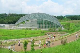 昆虫観察館は、生きた昆虫を観察できる貴重な施設。