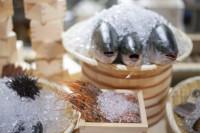 市場直送の新鮮魚介
