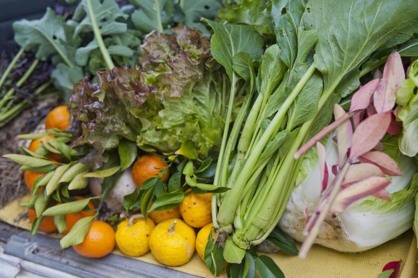 無農薬野菜を使用したヘルシーな料理