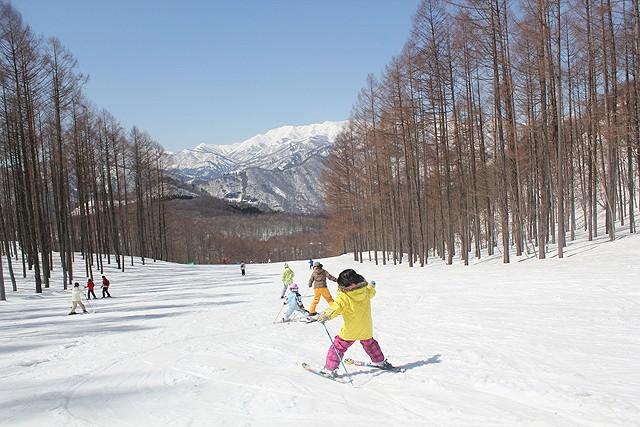 リゾート スキー 水上 高原